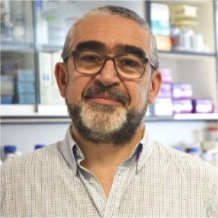 Francisco García del Portillo